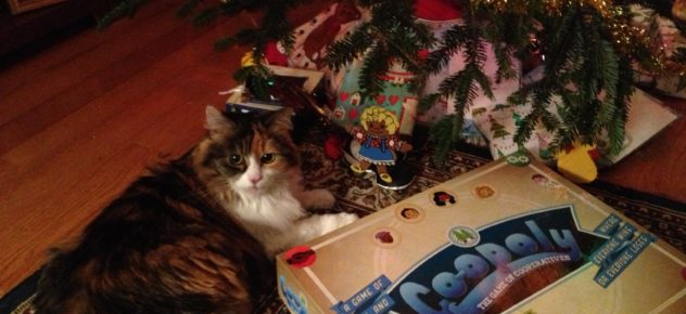 Cat pictured next to a copy of Co-opoly board game.